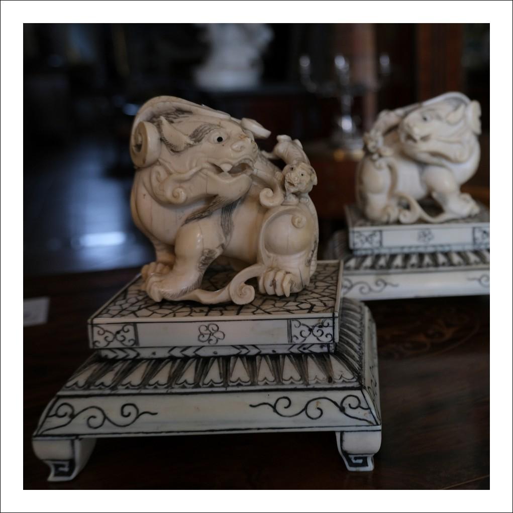 Coppia di cani antichi in avorio.Periodo XIX secolo.